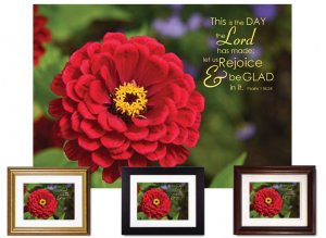 Gifts for House & Home - Let Us Rejoice/Zinnia