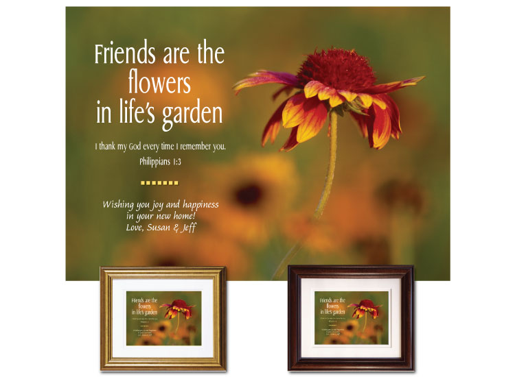 Friendship Gift - Wildflower - Click Image to Close