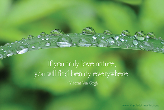 Download image Beautiful Nature Quotes PC, Android, iPhone and iPad ...