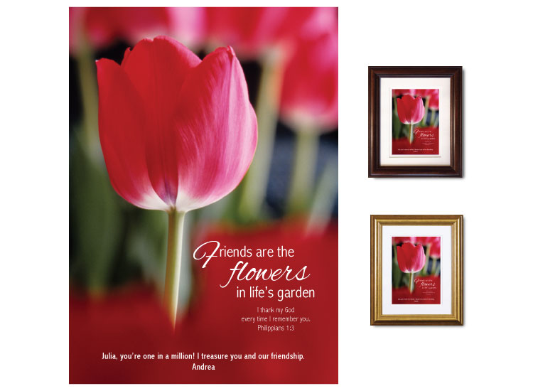 Friendship Gift - Tulip - Click Image to Close